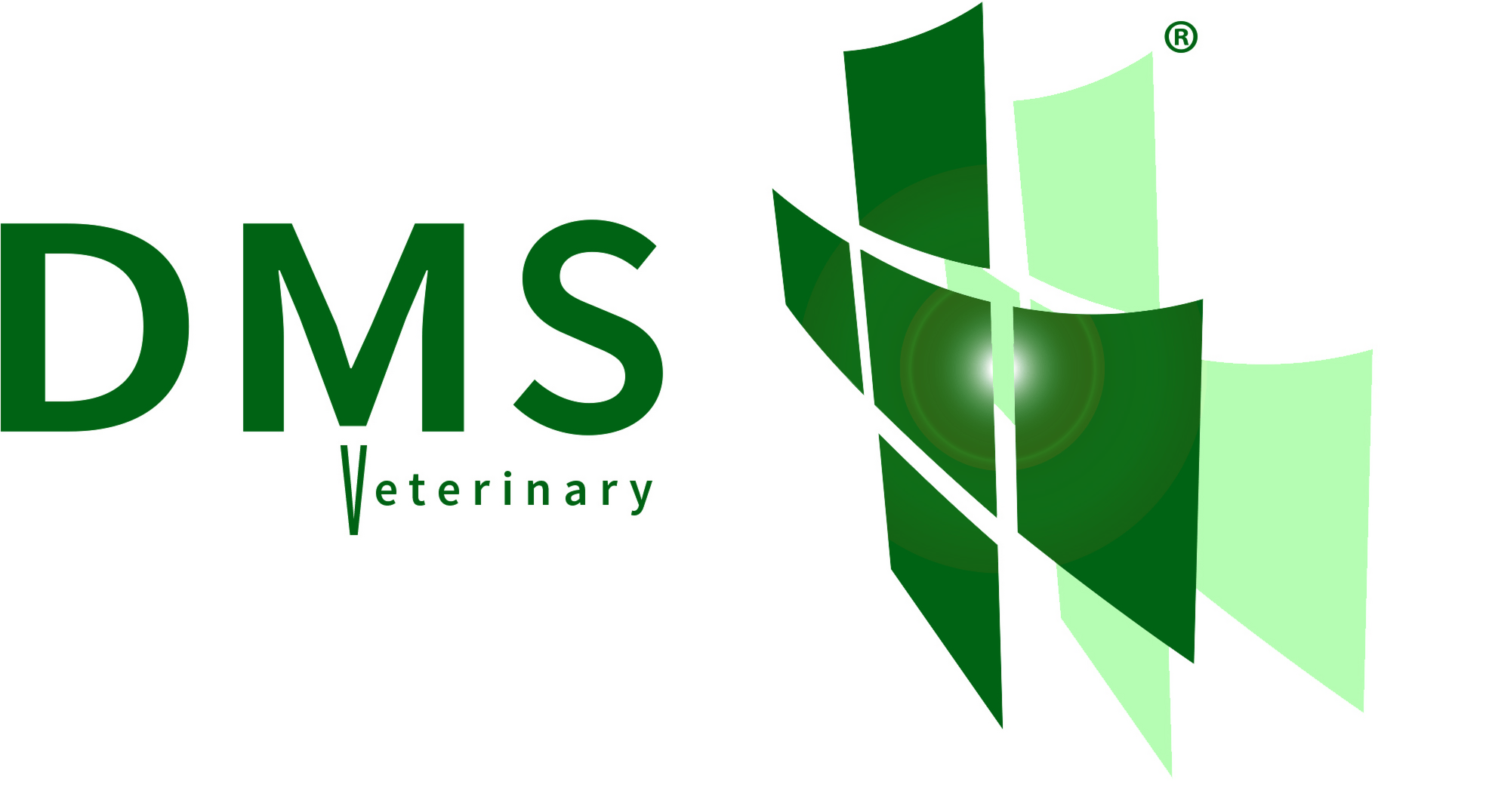DMS Plus Ltd